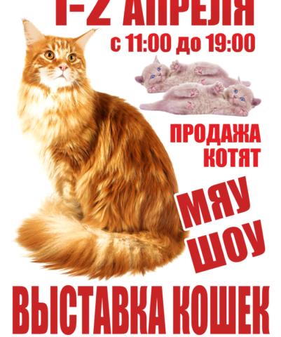 1-2 апреля 2017 — Программа выставки кошек