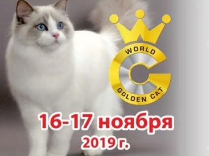 16, 17 ноября 2019 г. Выставка кошек «Золотая кошка Смоленска»